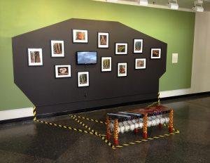 resnikoff gallery installation of strange stranger